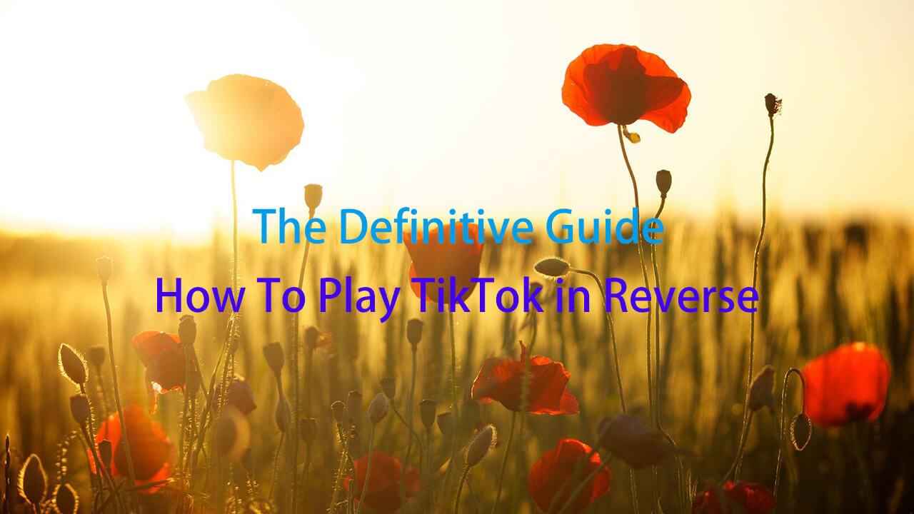 how to play tiktok in reverse